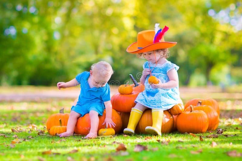Entzückende Kinder am Kürbisflecken stockfoto