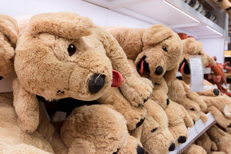 Entzückende Welpenpuppe im Einkaufszentrum auf Regalen lizenzfreie stockfotos