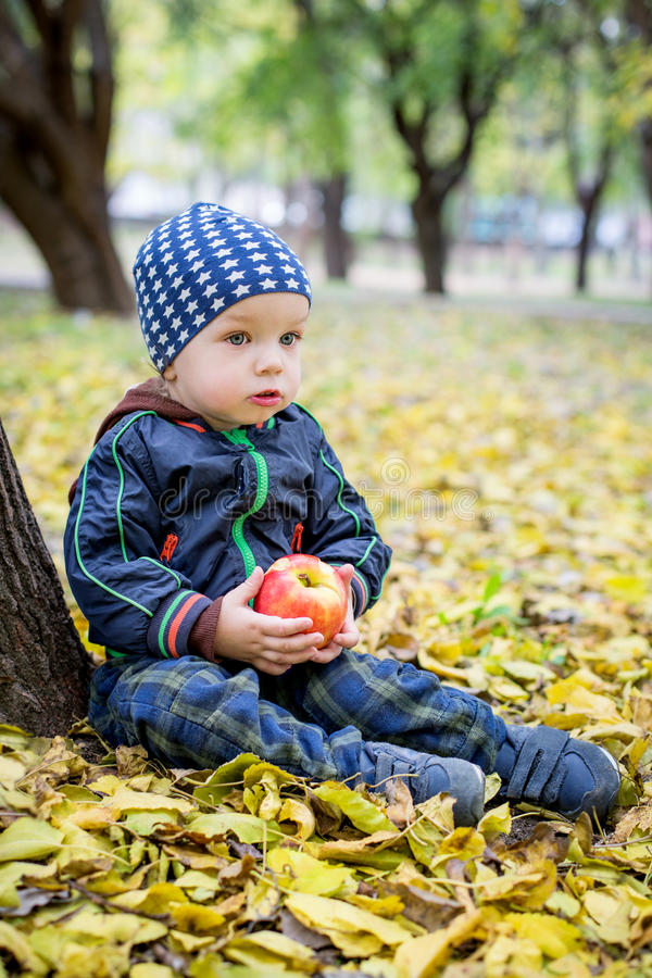 Entzückender Kleinkindjunge im Herbstpark lizenzfreie stockbilder