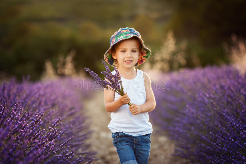 Entzückender netter Junge mit einem Hut auf einem Lavendelgebiet lizenzfreies stockbild