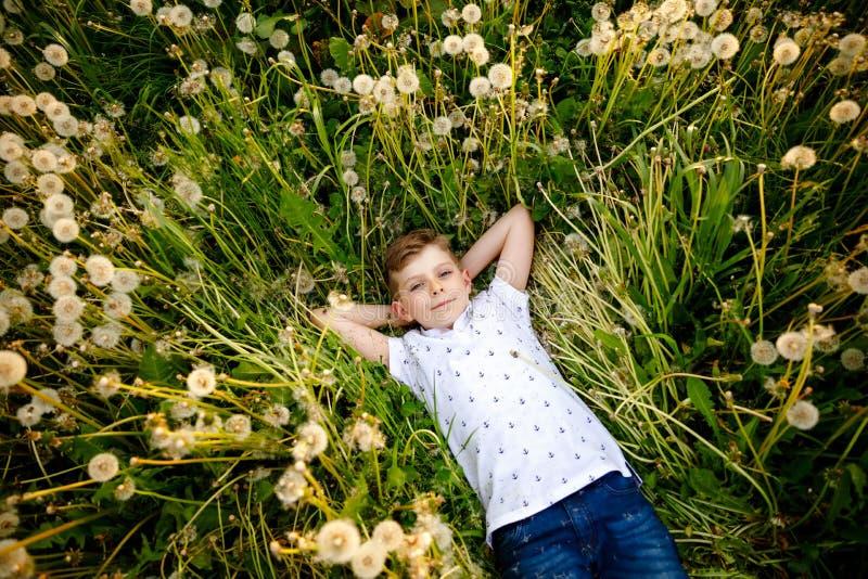 Entz?ckender netter Schuljunge, der auf Gras auf einem L?wenzahnblumenfeld die Natur im Sommer legt Gl?ckliches gesundes sch?nes lizenzfreie stockfotos