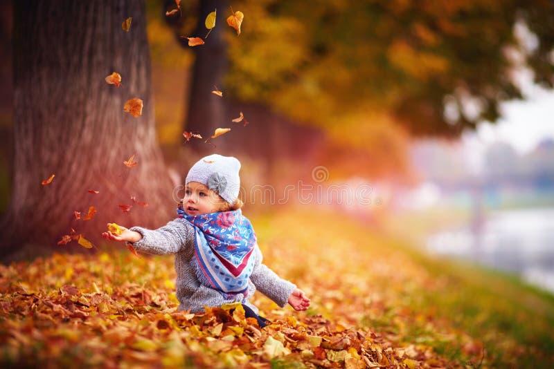 Entzückendes glückliches Baby, welches die gefallenen Blätter, spielend im Herbstpark fängt stockbilder