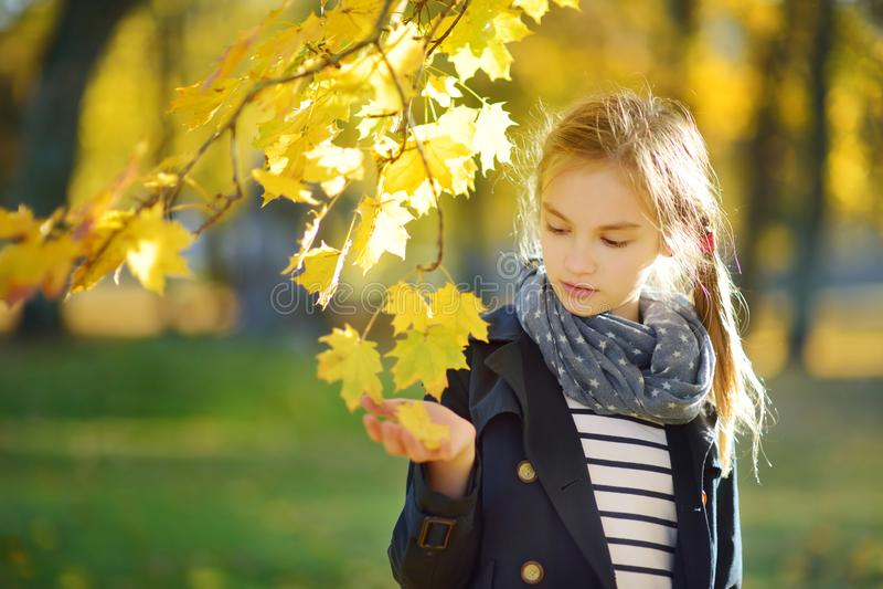 Entzückendes junges Mädchen, das Spaß am schönen Herbsttag hat Gl?ckliches Kind, das im Herbstpark spielt Kind, das gelben Herbst lizenzfreie stockbilder
