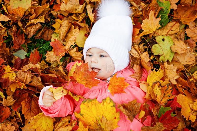 Entzückendes kleines Baby im Herbstpark an sonnigem warmem Oktober-Tag mit Eiche und Ahornblatt stockbild