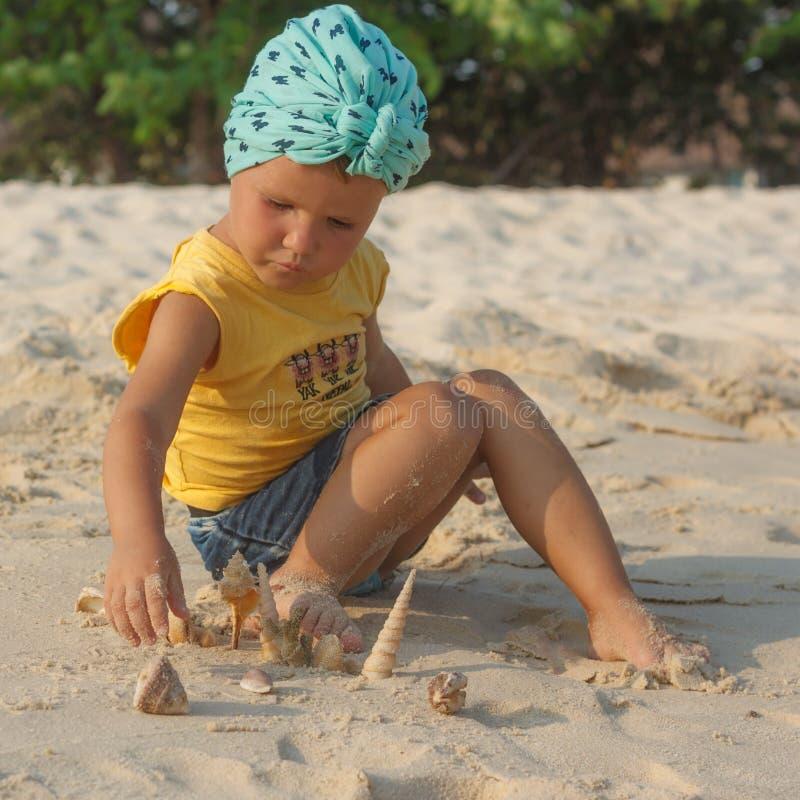 Entzückendes kleines Mädchen, das mit Muscheln am Strand spielt lizenzfreies stockfoto