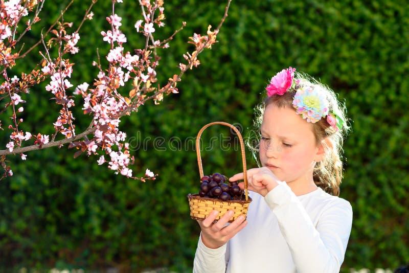 Entzückendes kleines Mädchen des Porträts mit Korb der Früchte im Freien Sommer oder Herbst Ernte Shavuot lizenzfreie stockfotografie