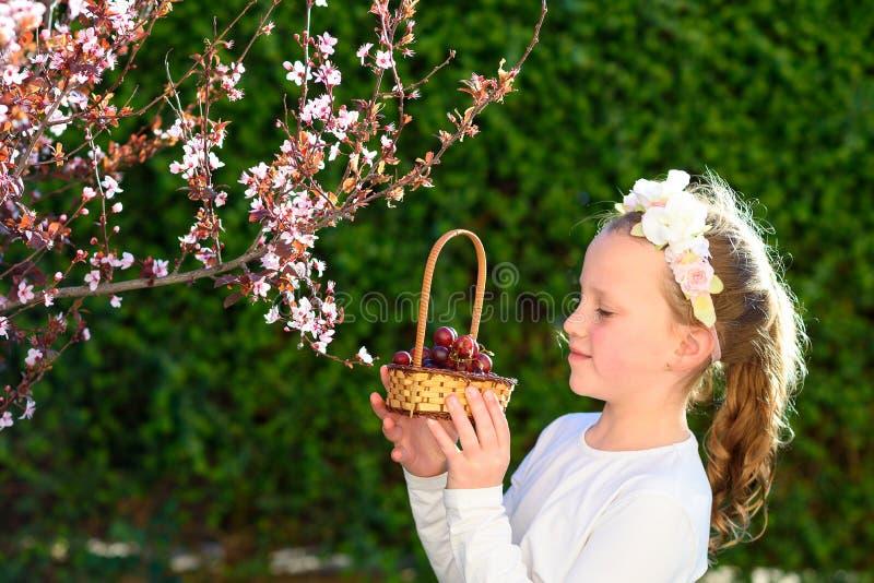 Entzückendes kleines Mädchen des Porträts mit Korb der Früchte im Freien Sommer oder Herbst Ernte Shavuot stockfoto