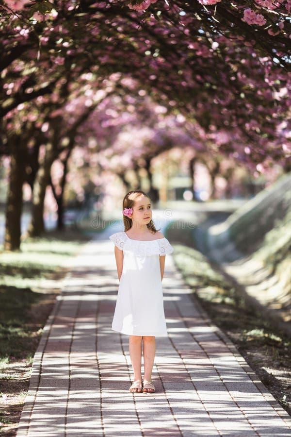 Entzückendes kleines Mädchen im weißen Kleid in blühendem rosa Garten am schönen Frühlingstag stockfotos