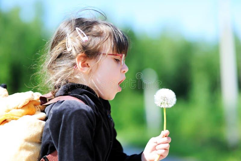 Entzückendes kleines Mädchen mit Löwenzahn lizenzfreie stockfotografie