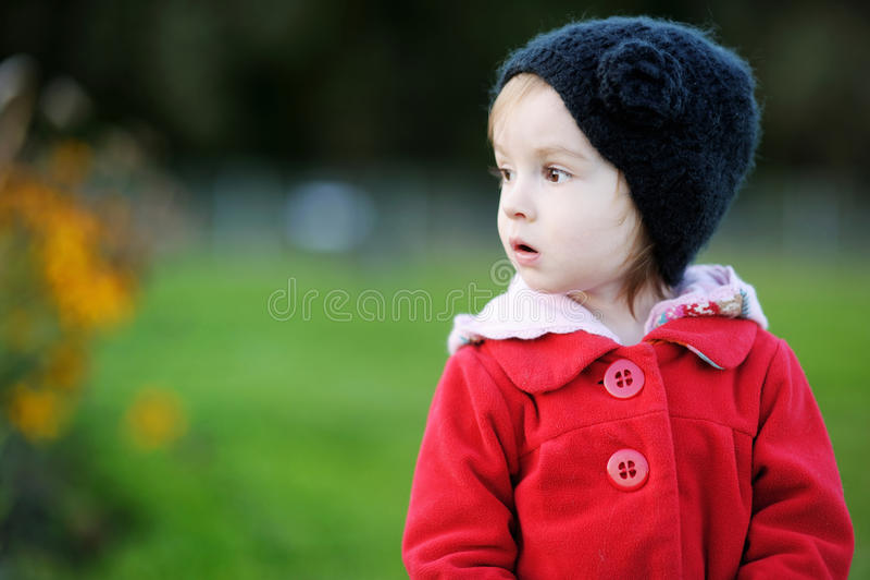 Entzückendes Kleinkind in einem Herbstpark lizenzfreie stockfotografie