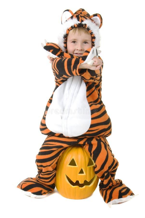 Entzückendes Kleinkind im Tigerkostüm lizenzfreie stockfotos