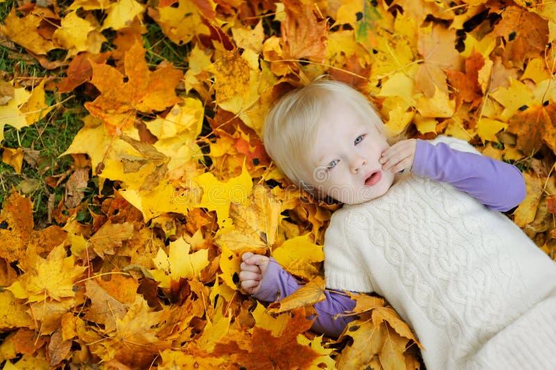 Entzückendes Kleinkindmädchen, das auf Ahornblätter legt lizenzfreies stockfoto