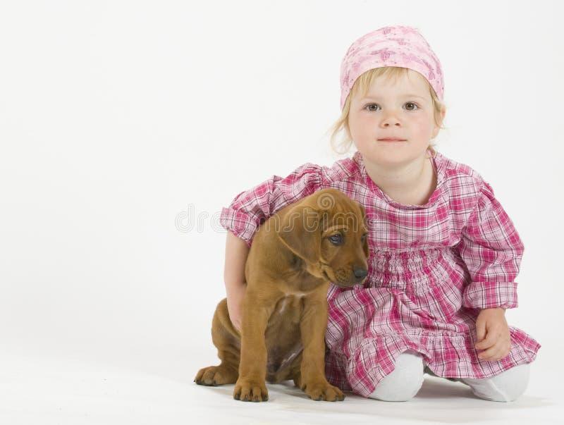 Entzückendes Mädchen umarmt ihren Welpen stockbild