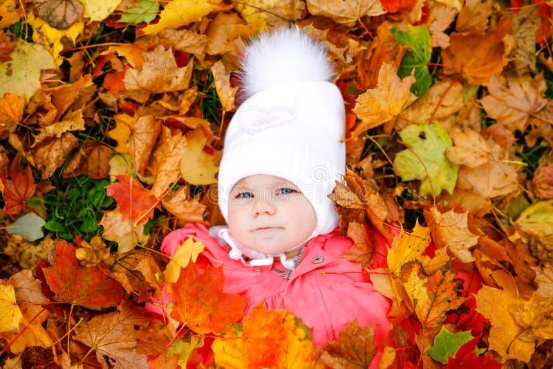 Entz?ckendes kleines Baby im Herbstpark an kaltem Oktober-Tag mit Eiche und Ahornblatt HDR Bild erstellt durch die Kombination vo lizenzfreie stockfotos