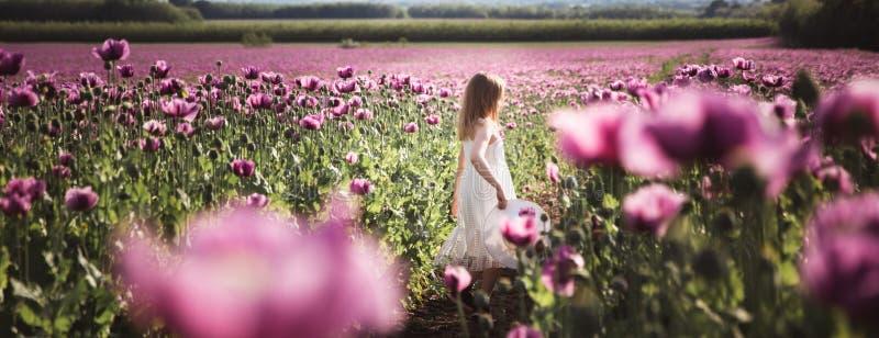Entz?ckendes kleines M?dchen mit dem langen Haar in wei?es Kleiderdem einsamen Gehen auf dem lila Poppy Flowers-Gebiet lizenzfreies stockbild