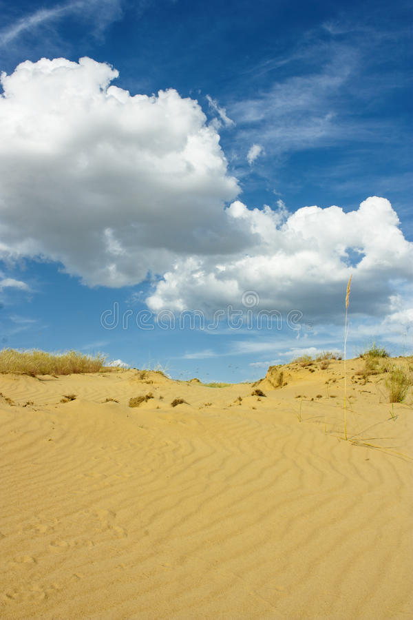 Download Envíe Whith Del Desierto El Cielo Nublado Foto de archivo - Imagen de amarillo, área: 42437996
