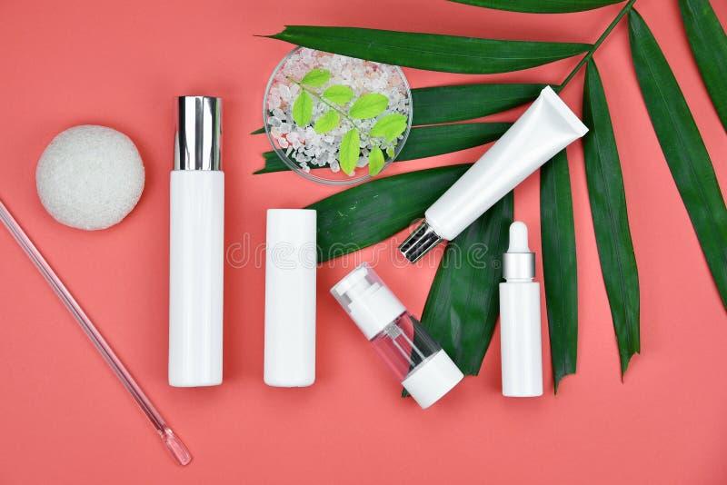 Envases cosméticos de la botella con las hojas herbarias verdes, etiqueta en blanco para la maqueta de marcado en caliente imágenes de archivo libres de regalías