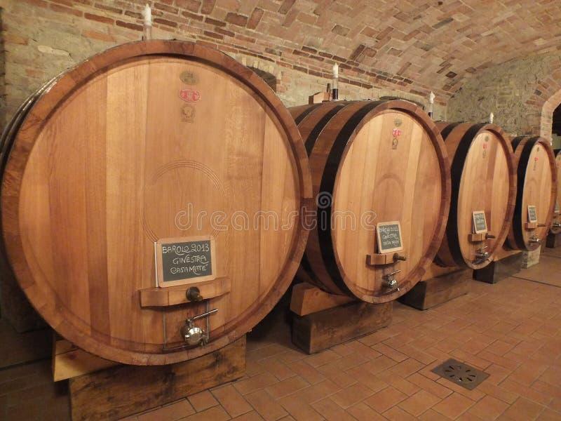 Envelhecimento do vinho de Barolo em uns barris de vinho italianos fotografia de stock
