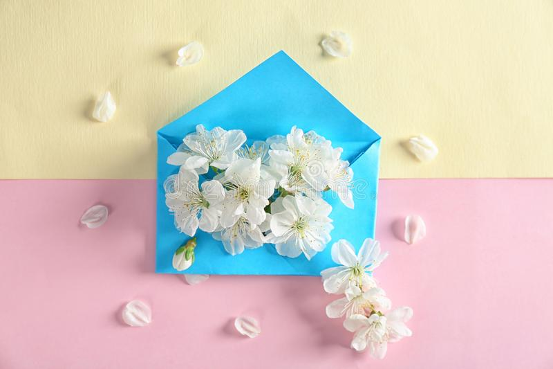 Envelop and blossoming spring flowers on color background stock photos