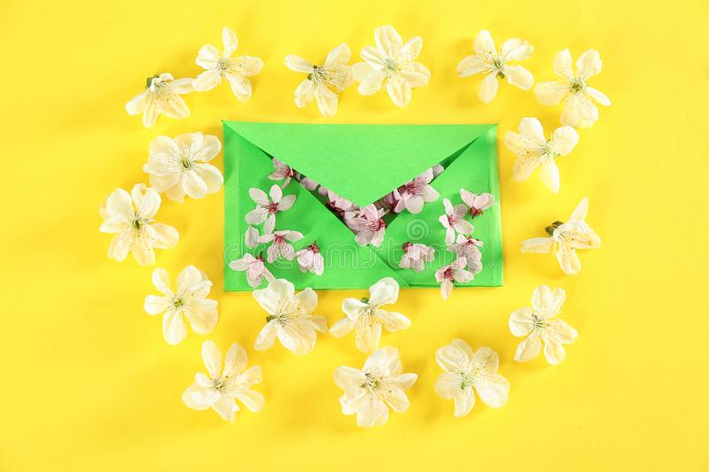 Envelop and blossoming spring flowers on color background royalty free stock photography