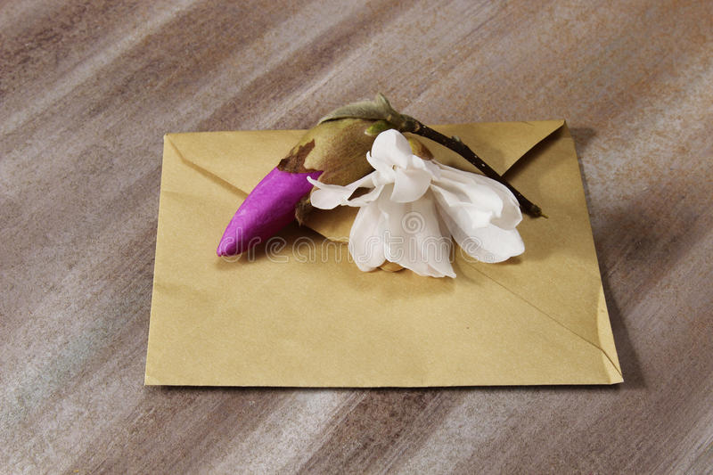 Envelop. A brown envelop with Magnolia blossom flowers on a wooden background stock photos