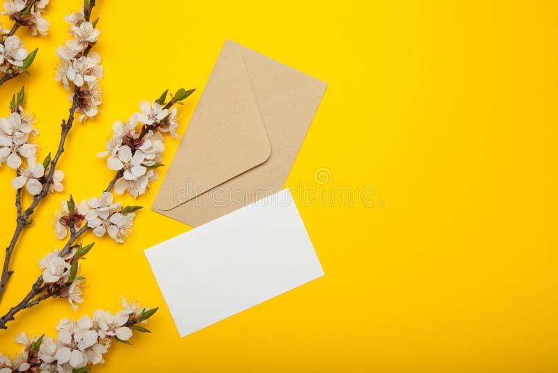 Envelop en lege uitnodiging, bloeiende abrikozentakken op een gele achtergrond Exemplaarruimte voor tekst stock foto