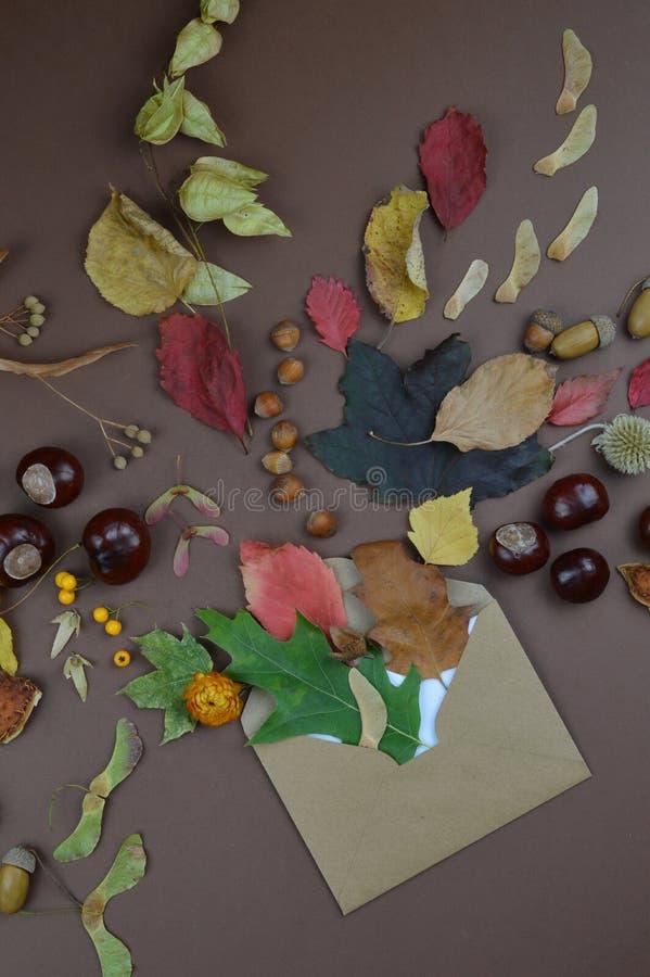 Envelope com cumprimentos do outono foto de stock