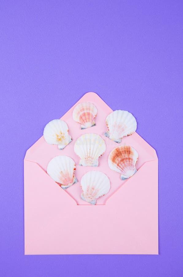Envelope cor-de-rosa com muitos shell de vieira no backgro roxo colorido imagem de stock royalty free