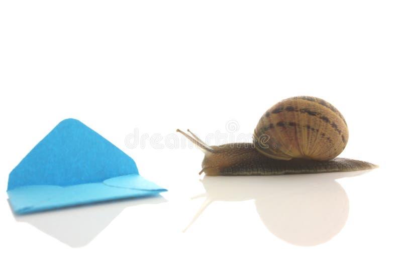 Envelope e caracol imagens de stock