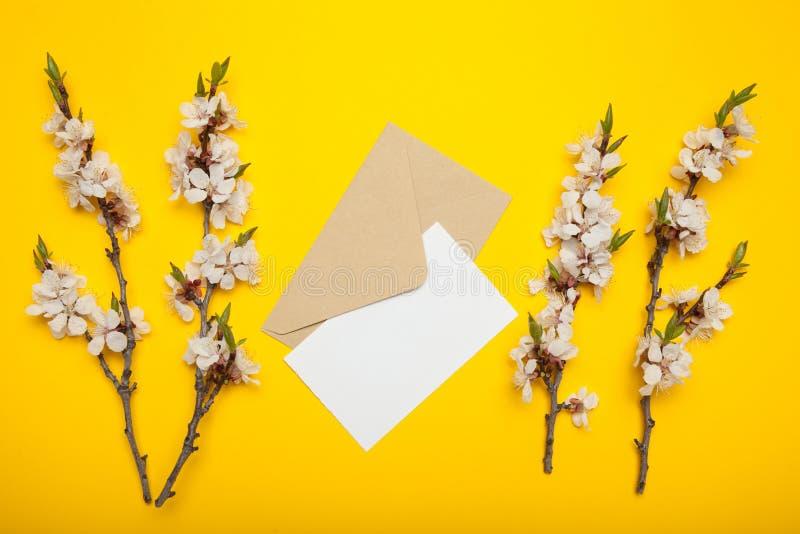 Enveloppe et lettre vide, branches fleurissantes d'abricot sur un fond jaune image libre de droits