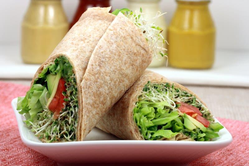 Enveloppes organiques de sandwich images libres de droits