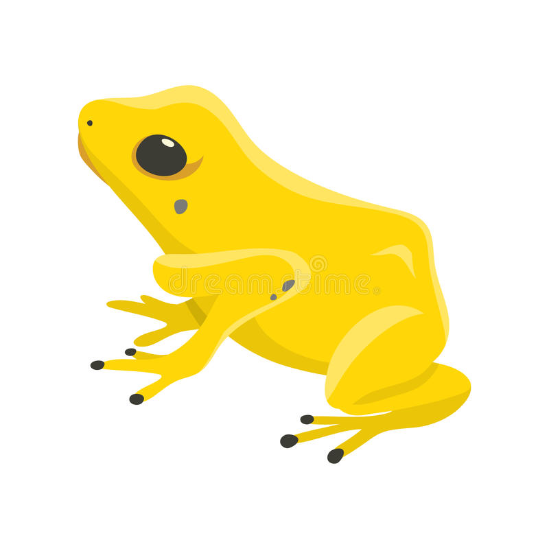 Envenene los terribilis de los phyllobates del dartfrog una rana peligrosa del vector tropical del bosque libre illustration
