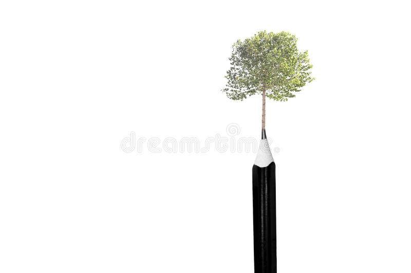 Environment conceptual tree on top of the pencils isolated royalty free stock images