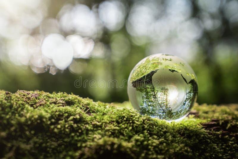 Environment conservation concept royalty free stock photos