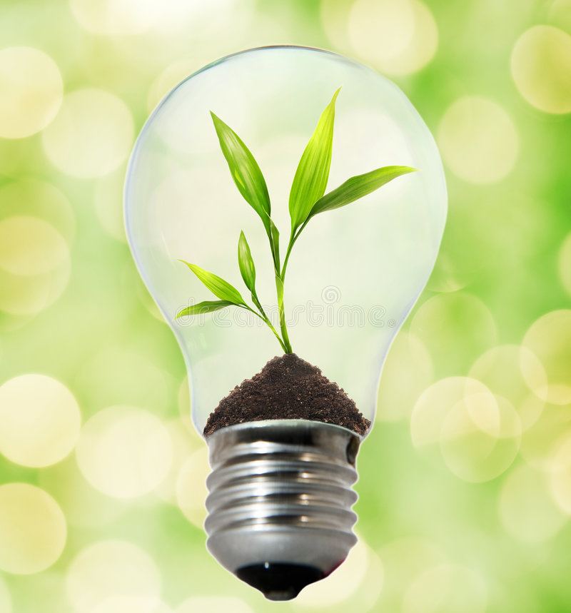 Download Environment friendly bulb stock image. Image of light - 7473437