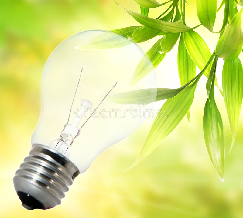 Download Environment friendly bulb stock photo. Image of bulb, flora - 7473440
