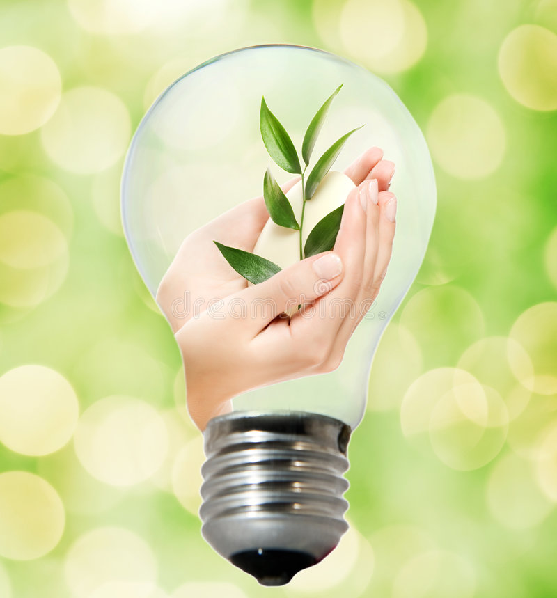 Environment friendly bulb stock photo