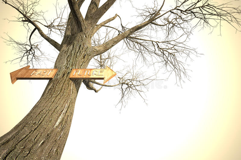 Environment Past Future Tree Sign Stock Photography