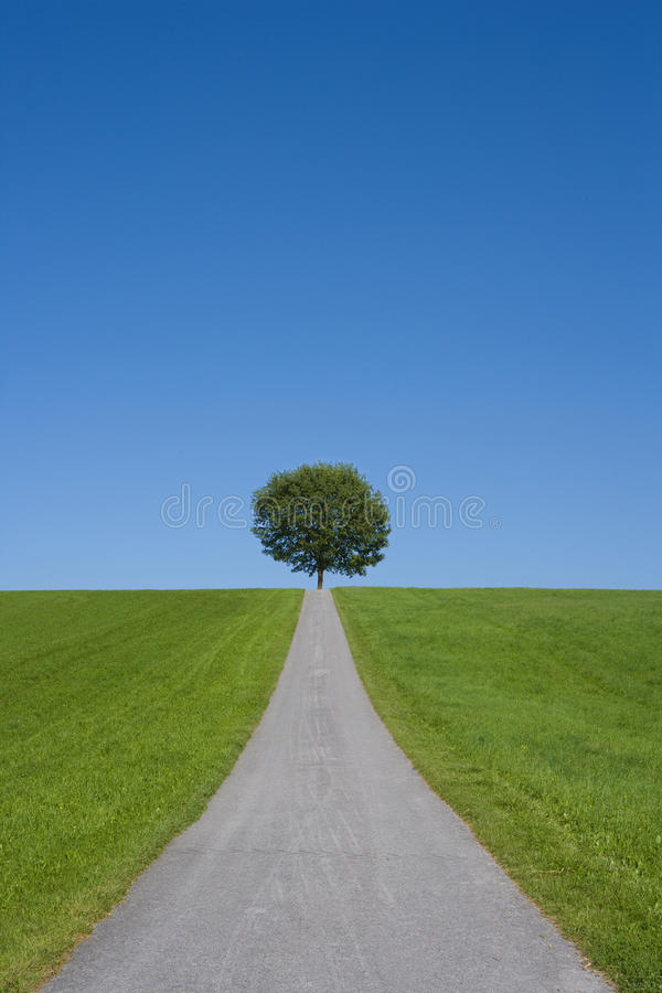 Download Environment Protection Stock Photo - Image: 10887850