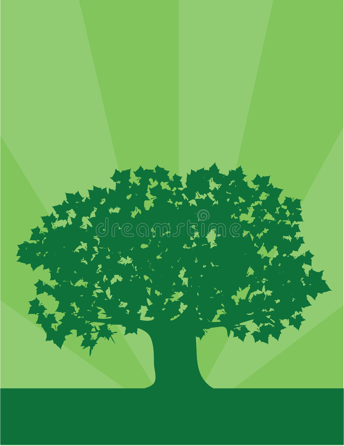 Download Environment Tree stock vector. Image of environment, outdoor - 7245343