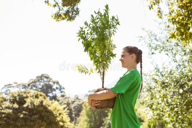 Environmental activist about to plant tree. On a sunny day royalty free stock images