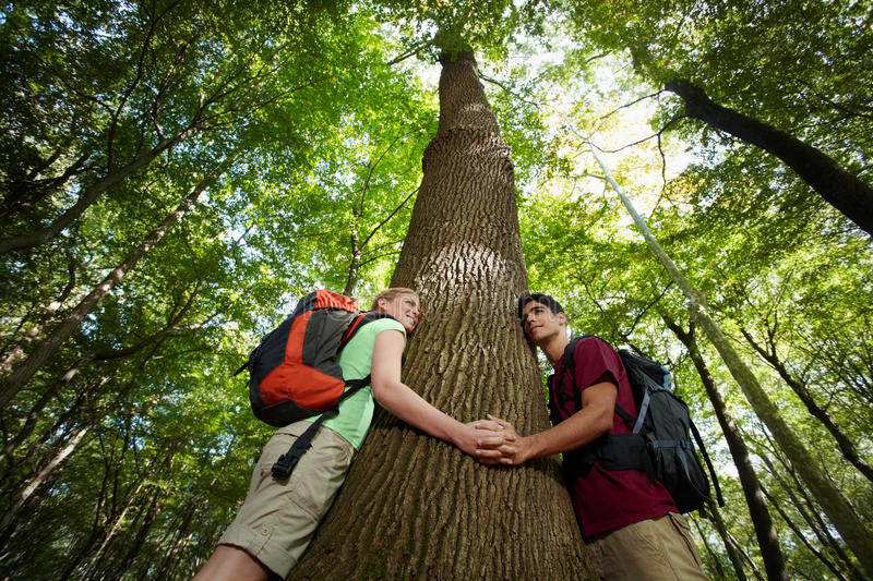 Environmental conservation: hikers embracing tree stock images