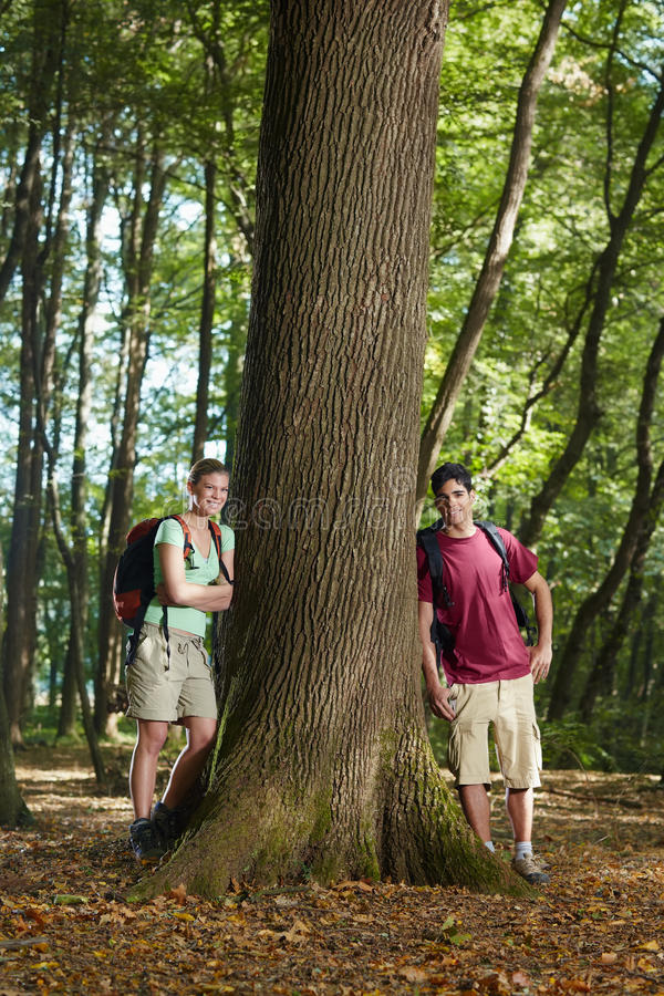 Environmental conservation: hikers leaning on tree royalty free stock photo