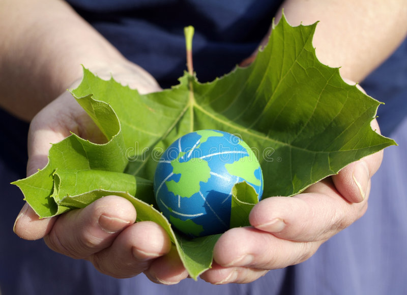 Environmental conservation and sustainability. Environmentalism Concept: Hands of an environmentally minded Person holding a leaf for protection of small eco stock photography