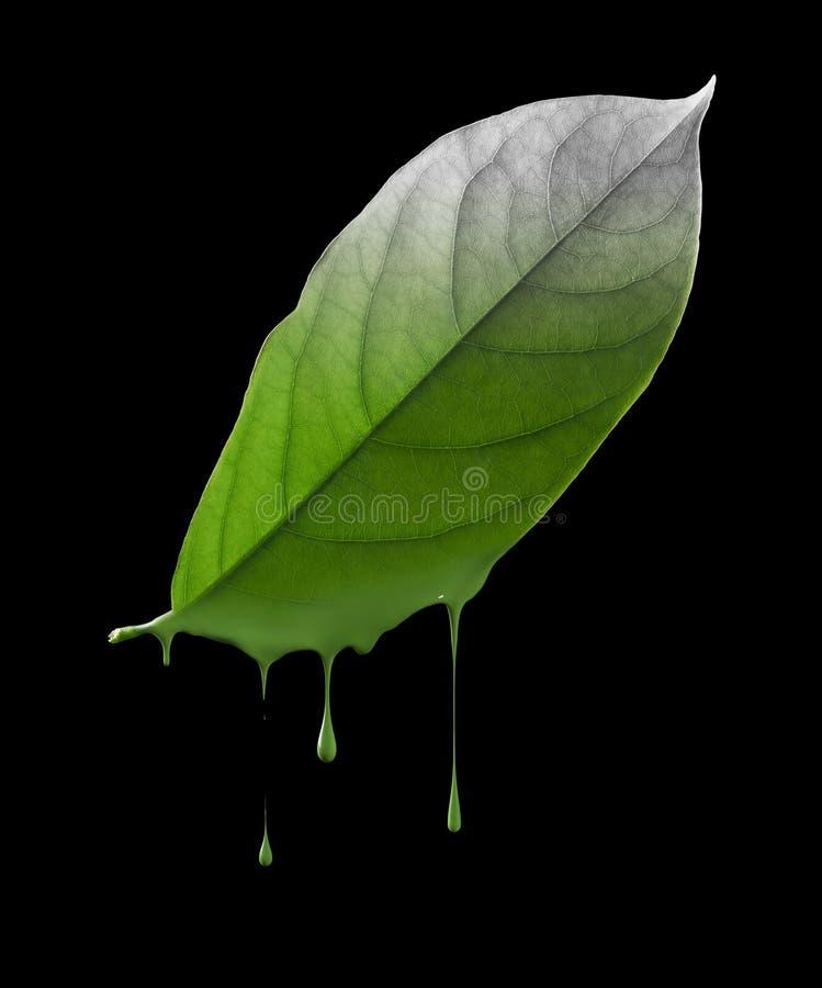 Free Environmental Damage Stock Images - 42349514