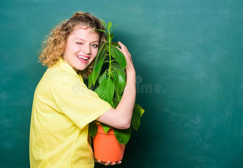 Environmental education. tree of knowledge. school learning ecology. teacher woman in glasses at biology lesson. happy. Student girl with plant at blackboard royalty free stock image