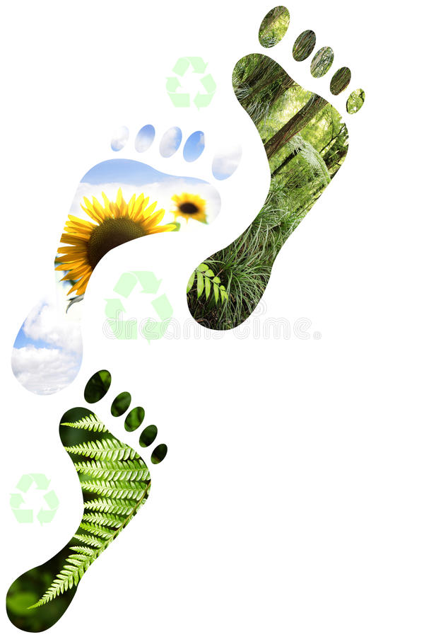 Download Environmental footprints stock illustration. Illustration of green - 11686502