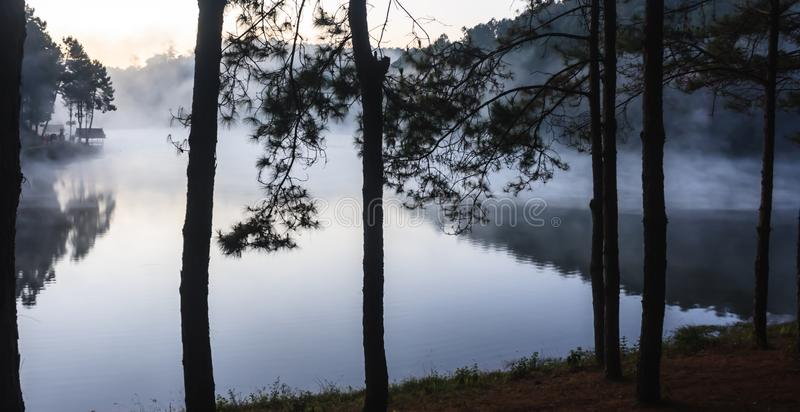 Environmental Friendly Outdoor Activity, Camping on the bank of the pretty serene lake glittering with sunlight and misty water. Surrounded by valley and royalty free stock photo