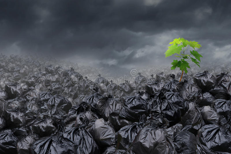 Download Environmental Hope stock illustration. Image of dump - 36128431