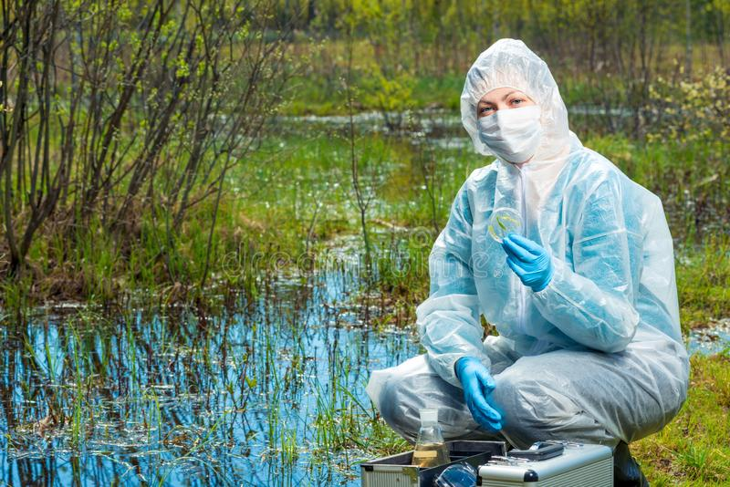 environmentalist chemist with samples of water and plants from the forest river conducts stock photo